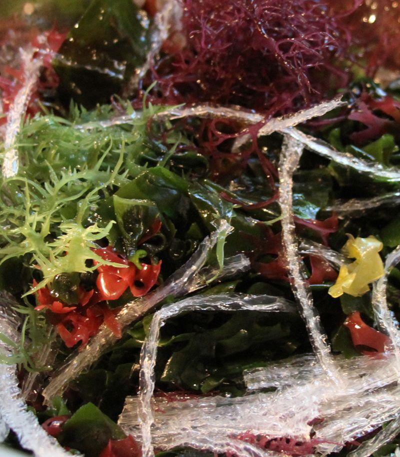 Japanese Seaweed Salad - StyleNectar